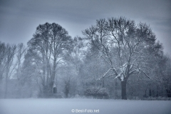 2019 Winter Pannesheide-04