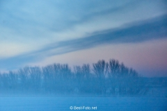 2019 Winter Pannesheide-05
