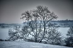 2019 Winter Pannesheide-19