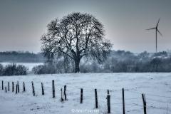 2019 Winter Pannesheide-23