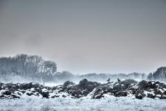 2019 Winter Pannesheide-24