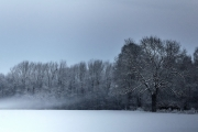2019 Winter Pannesheide-01