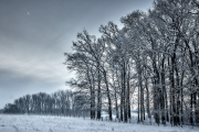 2019 Winter Pannesheide-06