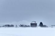 2019 Winter Pannesheide-07