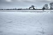 2019 Winter Pannesheide-10