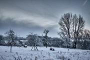 2019 Winter Pannesheide-14