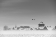 2019 Winter Pannesheide-15