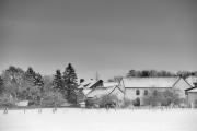 2019 Winter Pannesheide-28