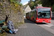 2016 Wanderung Eifel-DSC03488