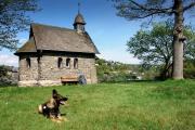 2016 Wanderung Eifel-DSC03492