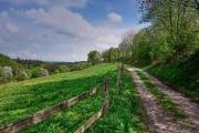 2016 Wanderung Eifel-DSC03513