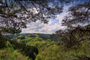 2016 Wanderung Eifel-DSC03519