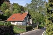 2016 Wanderung Eifel-DSC03528