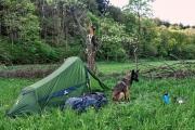 2016 Wanderung Eifel-DSC03529