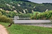 2016 Wanderung Eifel-DSC03544