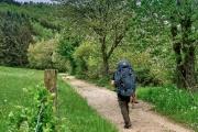 2016 Wanderung Eifel-DSC03564