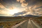 131-2014_Dovrefjell-IMG_1116