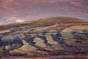 186-2014_Dovrefjell-IMG_5715