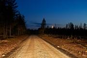 Waldpiste mit Mondsichel in einer Nacht in Schweden