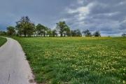 Radtour an der Donau - vor Ehingen