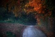 2019-Herbst-im-Dorf-05