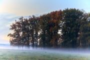 2019-Herbst-im-Dorf-06