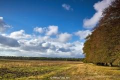 2018- Hoge Veluwe-03