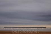 2012_Camargue-0562