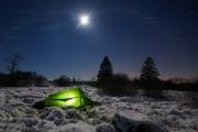 Winternacht im Hohen Venn bei Vollmond