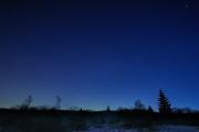 Winternacht im Hohen Venn mit Blick auf den südlichen Himmel
