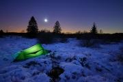 Winternacht im Hohen Venn. Im Vordegrund schläft Luna.