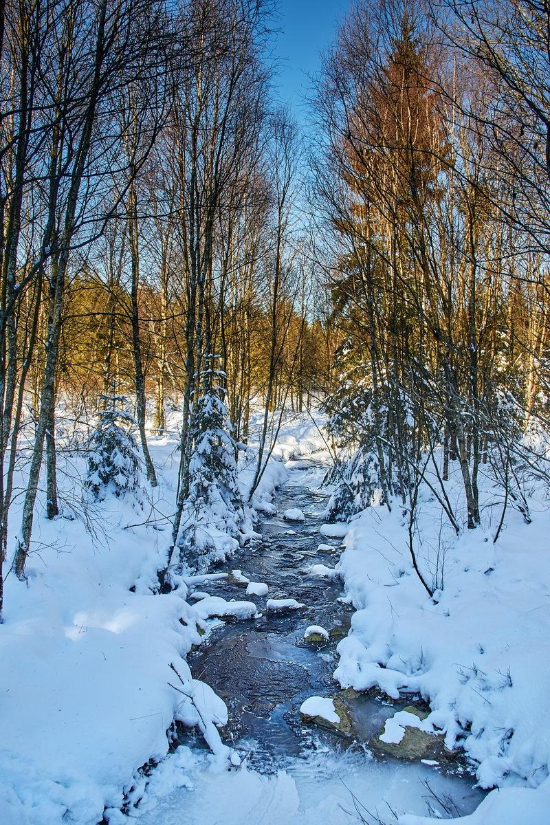 Winter in der Eifel und im Hohen Venn-22