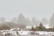 Winter in der Eifel und im Hohen Venn-03