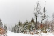 Winter in der Eifel und im Hohen Venn-07